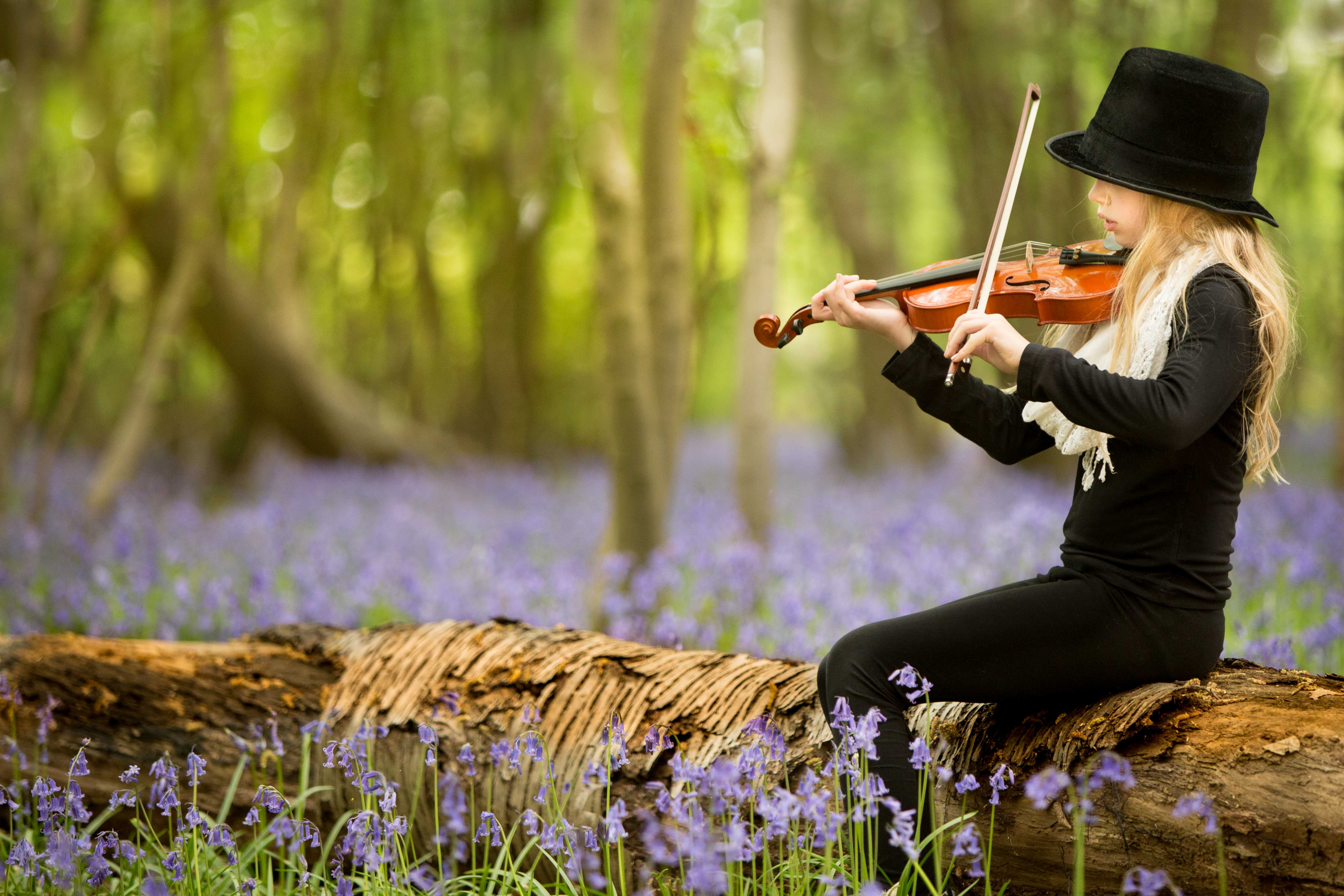 violin bluebells