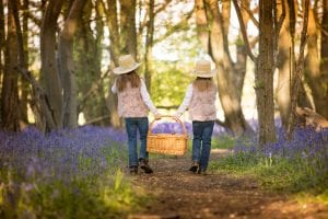 bluebell basket walk