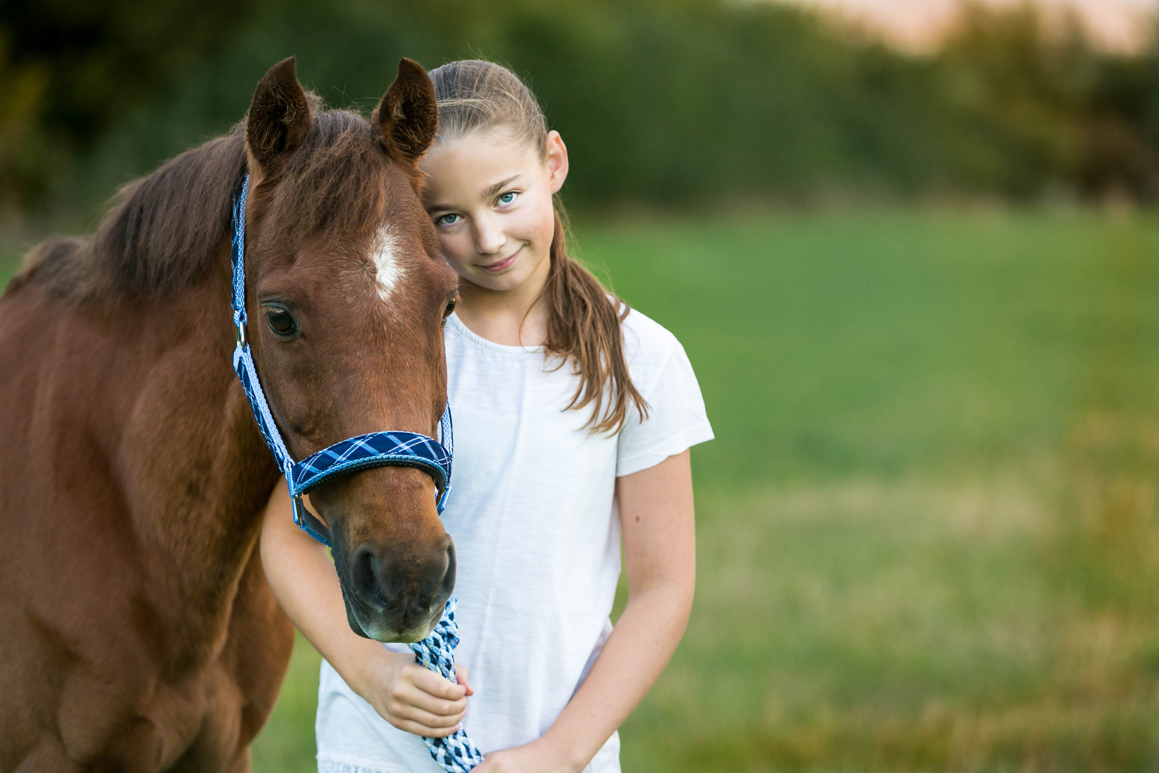 family horse pet photographer photoshoot St Albans Harpenden