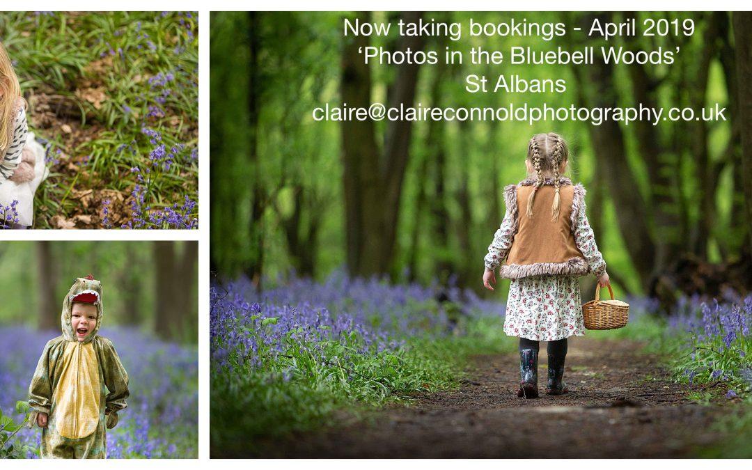 Bluebell Woods St Albans