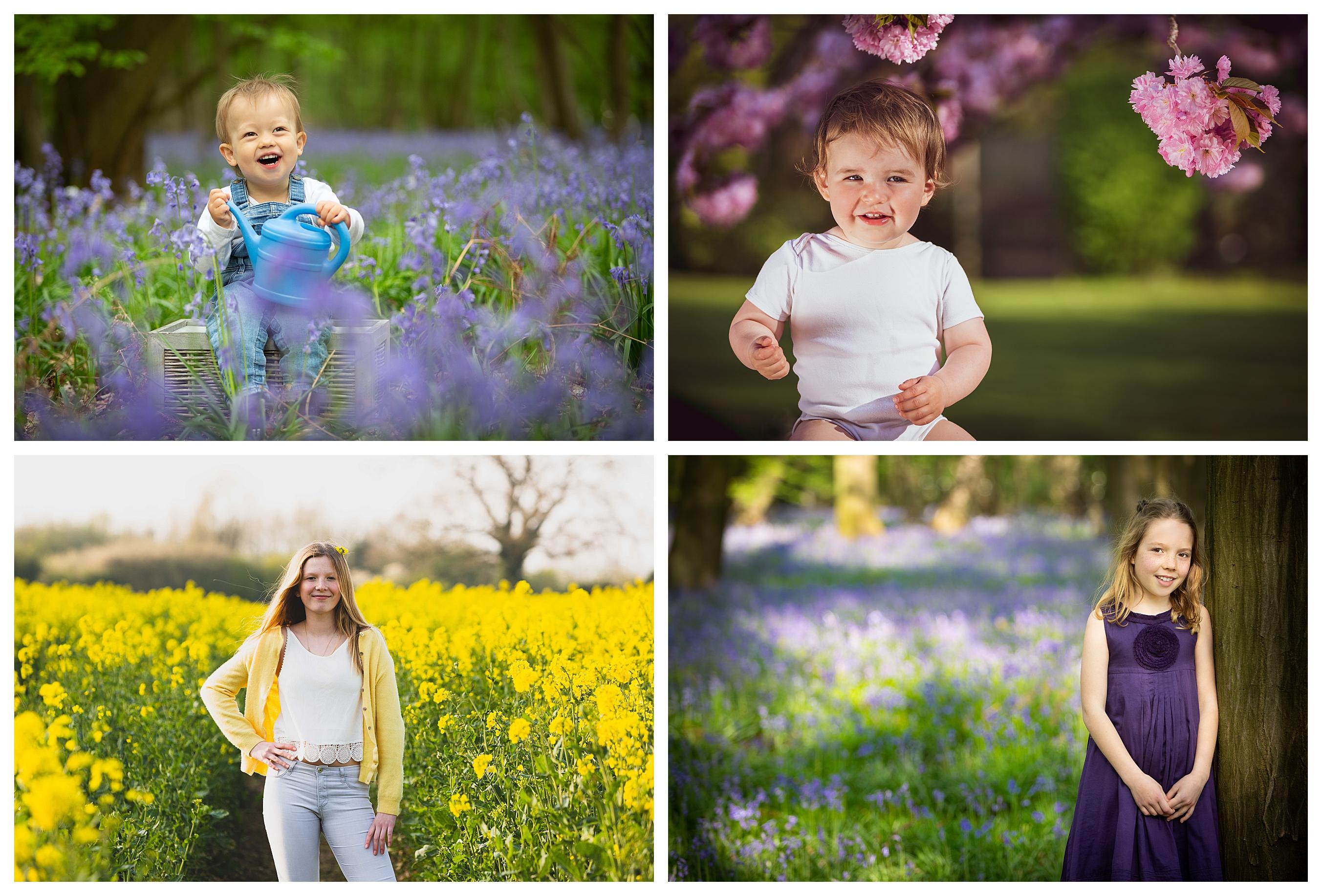 Spring bluebells blossom St Albans
