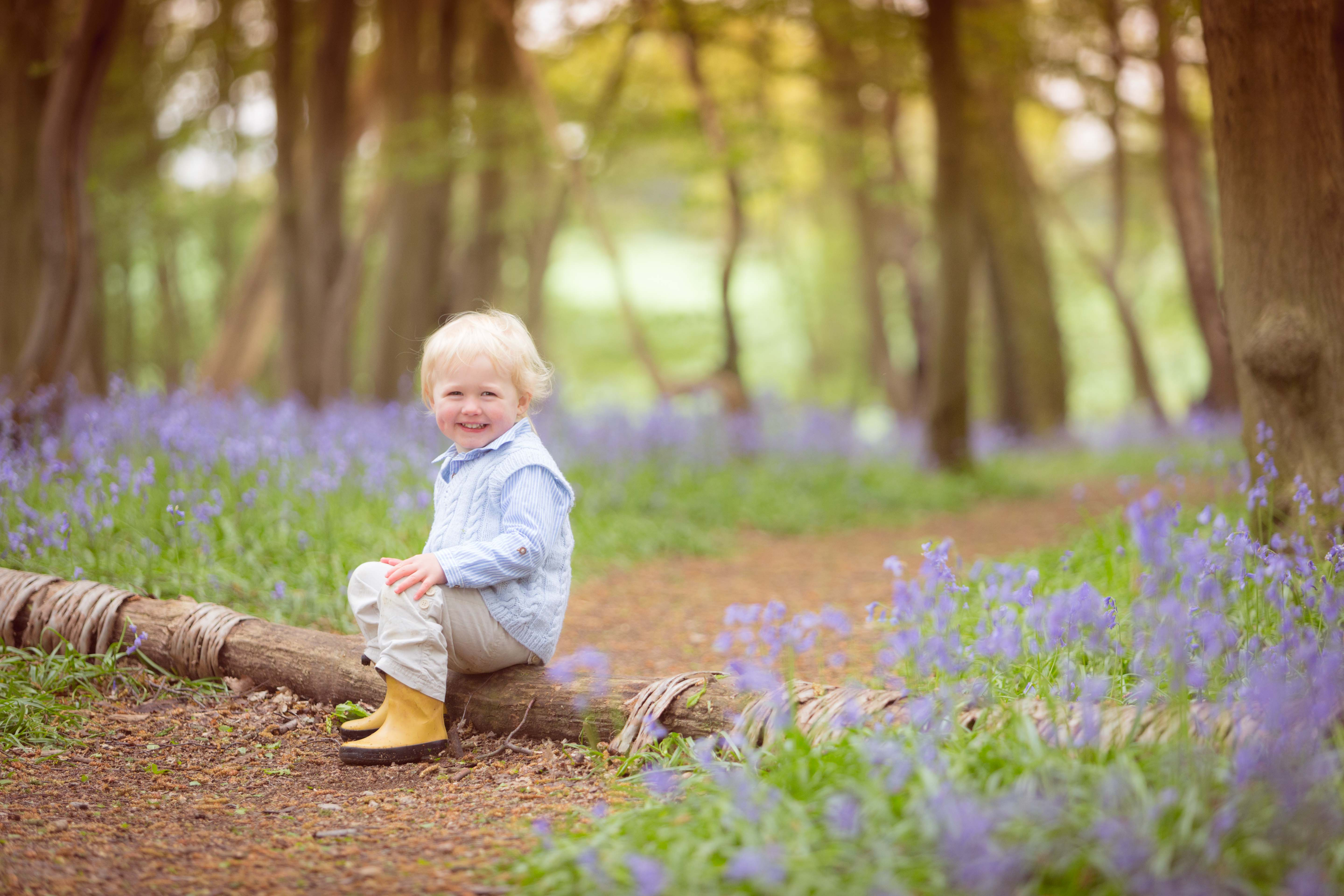 boy children bluebells St Albans photography