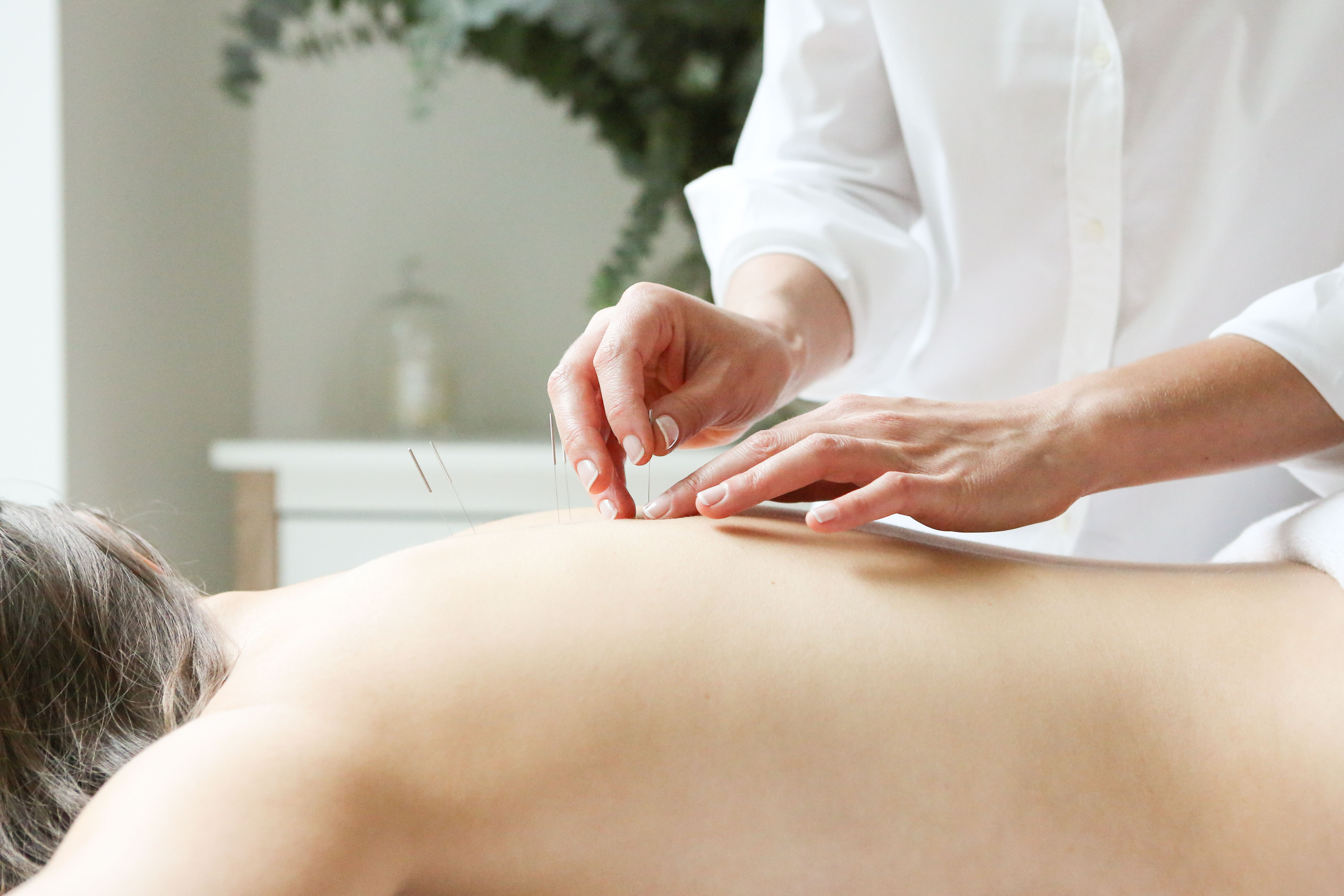treatment rooms website acupuncture website business start up photos