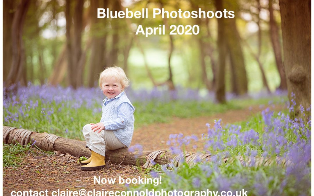 Now Booking Bluebell Photoshoots!