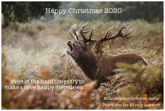 Happy Christmas 2020