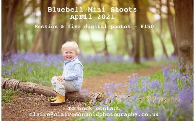 Spring & Bluebell Photo Shoots